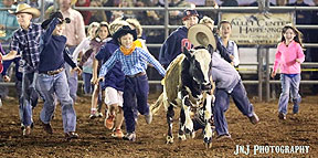 Valley Center Stampede Rodeo Calf Scramble